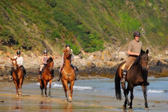 Ballade cheval - Activités - Canggu