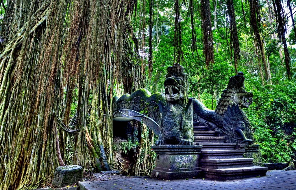 Ubud-Monkey-Forest.