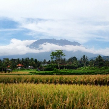 Est de Bali