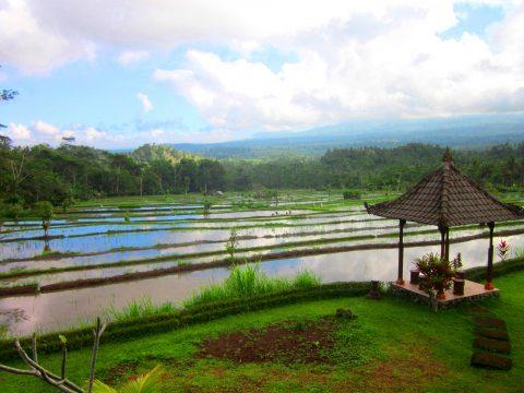 Shanti Travel - voyage à Bali - Sidemen