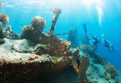 L'épave du Liberty est un site de plongée splendide qui attire les plongeurs de tous niveaux ! (Crédit photo : ultramarina.com)