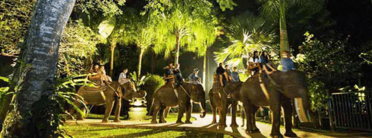 La promenade à dos d'éléphant laisse toujours des souvenirs impérissables. (Crédit photo : oovatu.com)