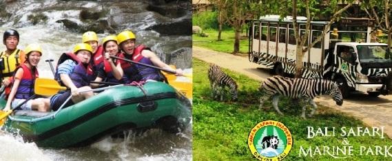 Le Bali SAfari & Marine PArk promet des expériences variées et sensationnelles. (Crédit photo : gorgeousbali.com)
