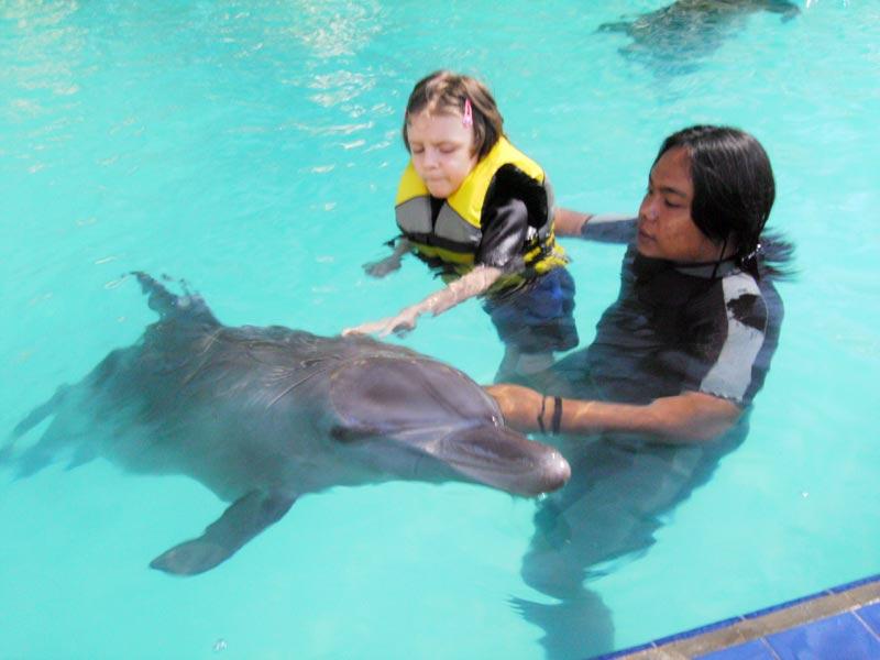 Si l'hôtel ne délivre pas de soins médicaux, les dauphins permettent un véritable accompagnement dans le processus de guérison. (Crédit photo : www.melkahotel.com)