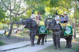 La balade à dos d'éléphant laisse des souvenirs inoubliables. (Crédit photo : ydcbalitour.com