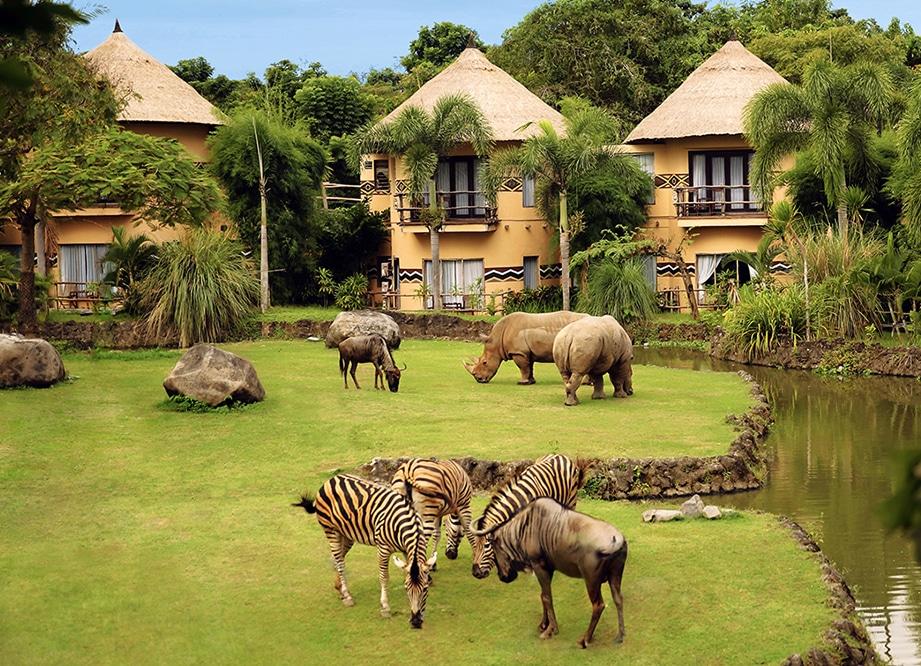 Avec sa faune très riche (plus de 60 espèces différentes), le Bali Safari & Water Park propose un safari hors-norme. (Crédit photo: balisafarimarineprk.com)