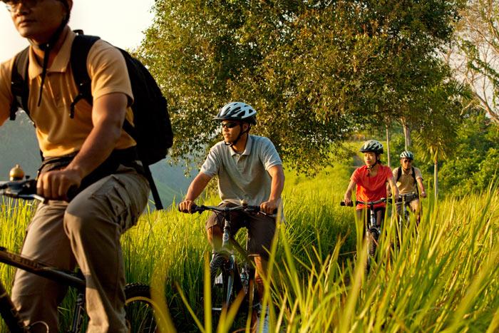 Balades vélo - Ubud