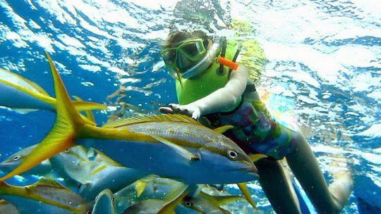 Les clubs de plongée de la côte balinaise sont très réputés et offrent un spectacle marin à couper le souffle. (Crédit photo : voyageparadis.blogspot.com)