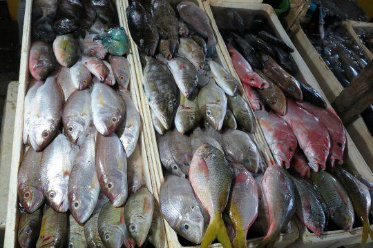 Le marché aux poissons de Jimbaran offre tous les délices marins à ses visiteurs. CR : nouvelezereland.canalblog.com